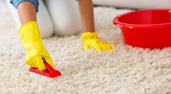 Как провести глубокую экологическую чистку ковров